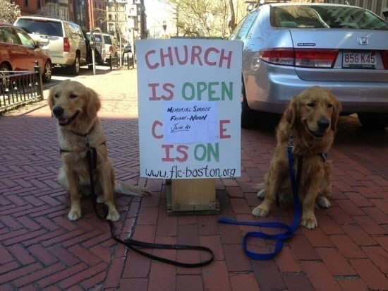 dogs and sign