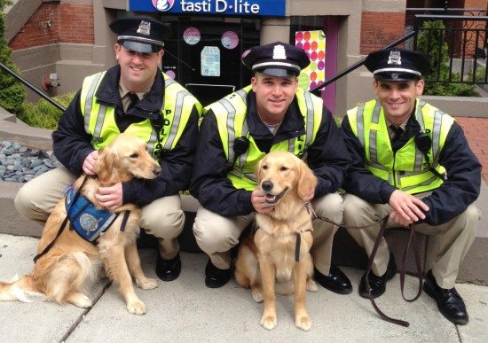 Police officers take a well-deserved break with the comfort dogs on Newbury Stret